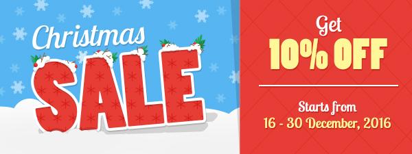 Christmas Sale! 10% OFF!